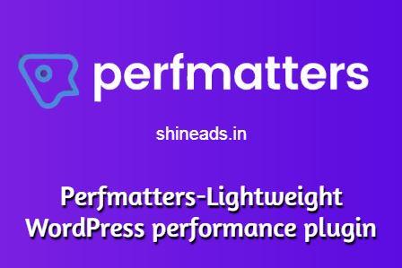 Perfmatters-Lightweight WordPress performance plugin