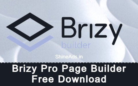 Brizy Pro Page Builder Free Download