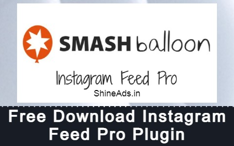 Free Download Instagram Feed Pro Plugin